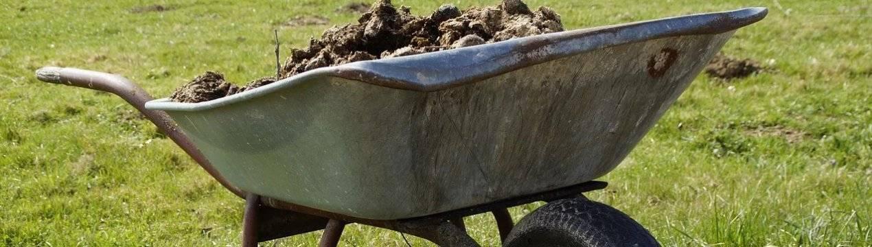 Удобрение из коровьего навоза