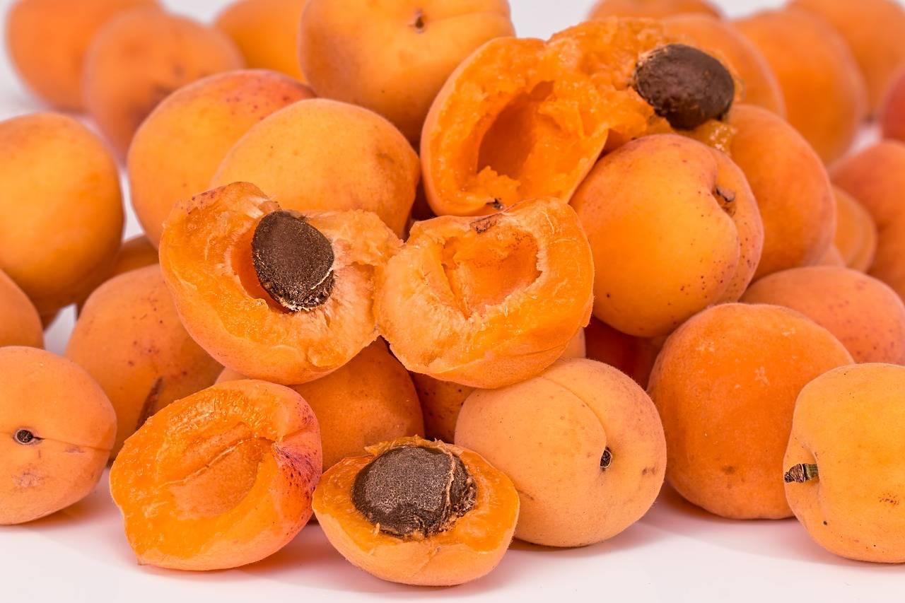 Польза и вред абрикосовых косточек: отзывы. ядра абрикосовых косточек: польза и вред