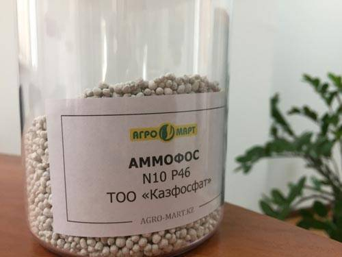 Нитроаммофоска — как использовать удобрение правильно?