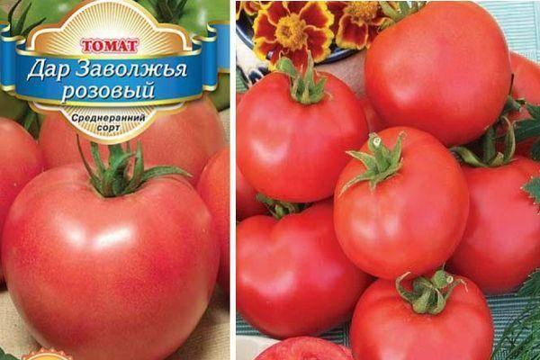 Сорта помидоров для ростовской области