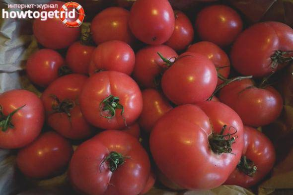 Как выглядит спелый томат кукла f1 — плюсы и минусы сорта