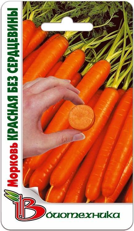 Сорта моркови без сердцевины