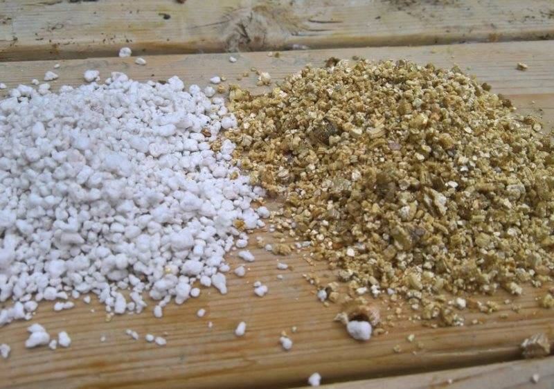 Перлит и вермикулит: свойства, разница между ними, их достоинства и недостатки в выращивании растений