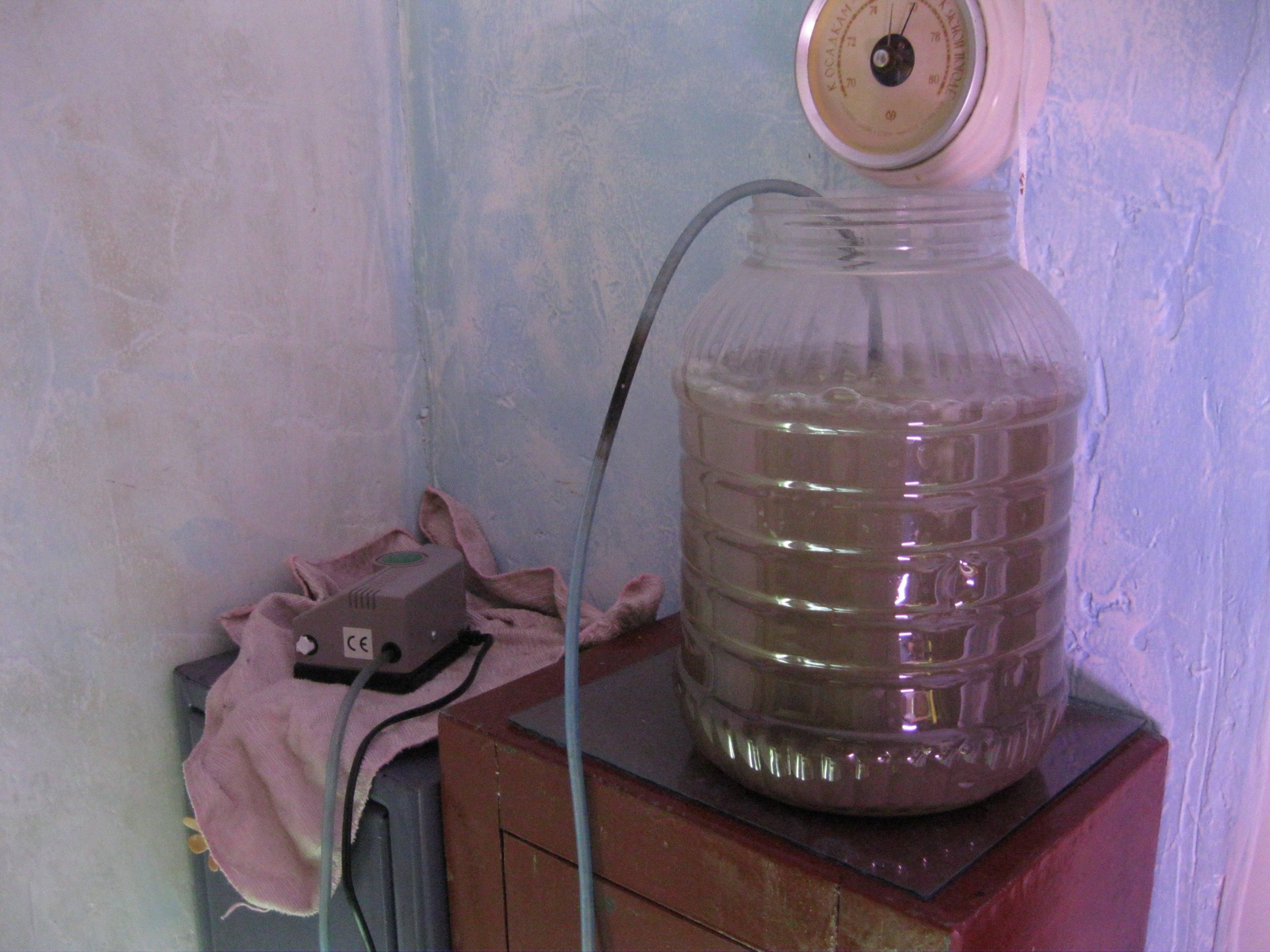 Барботирование семян в домашних условиях