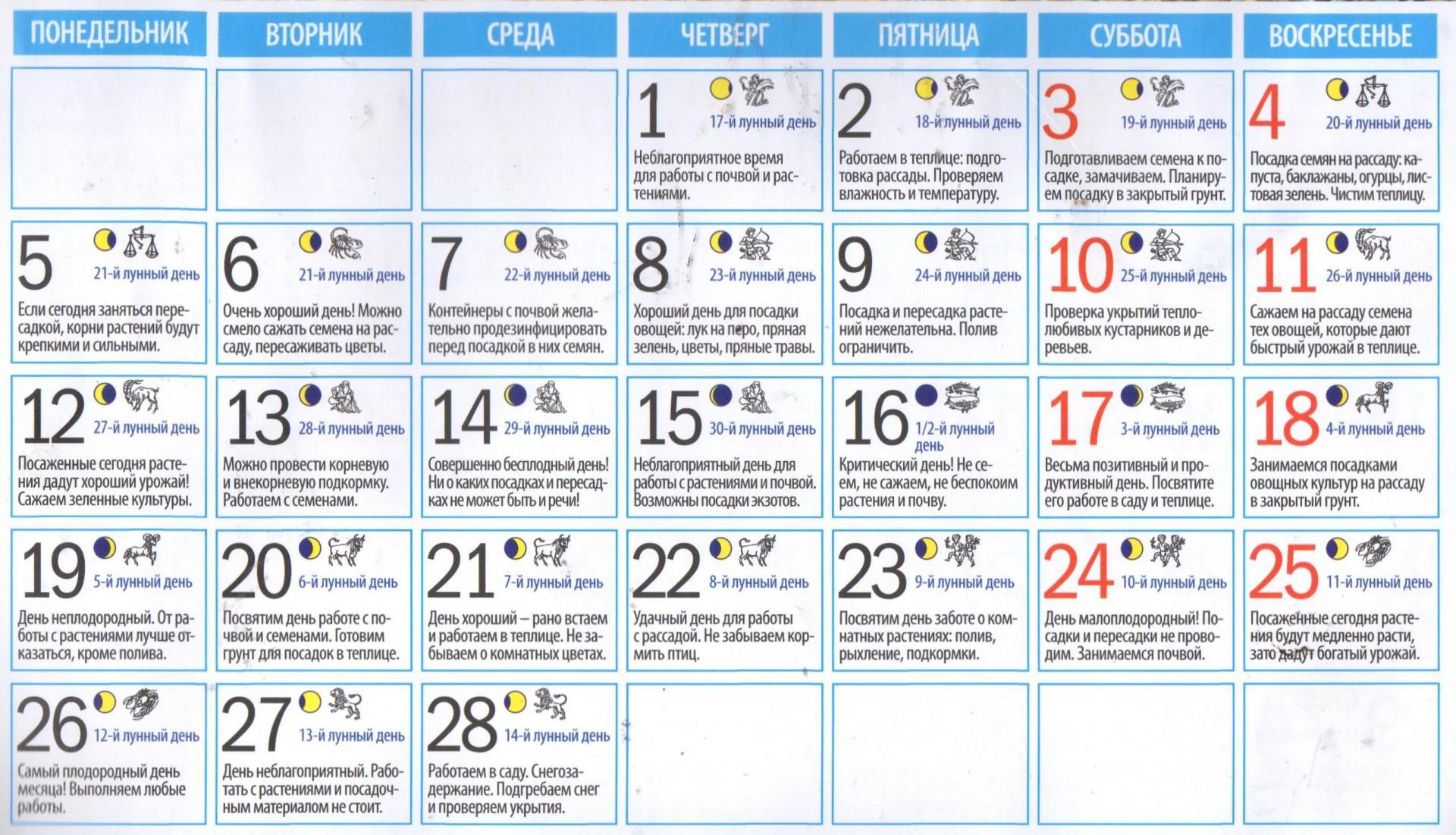 Благоприятные дни для посадки баклажан в 2020 году по лунному календарю