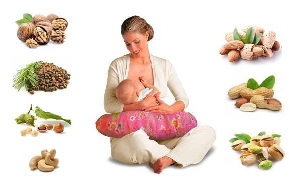Грецкие орехи при грудном вскармливании: польза, сколько можно