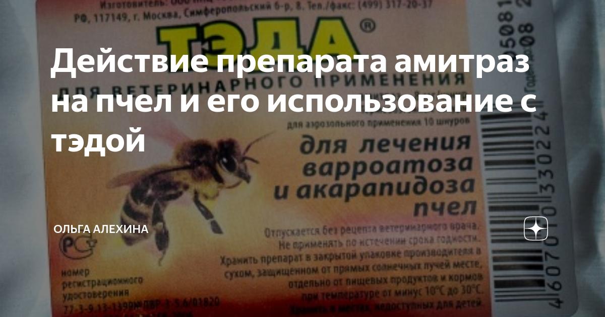 Варроатоз: лечение и обработка пчел