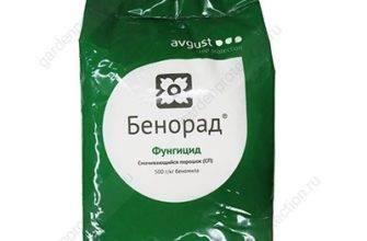 Фунгицид дитан м-45