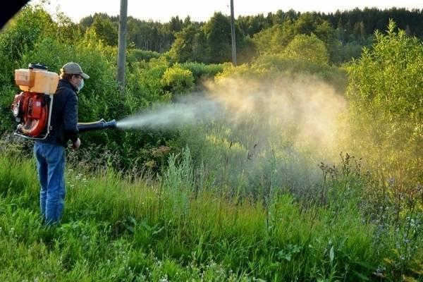 Граунд от сорняков: инструкция по применению