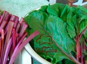 Листья свеклы на зиму заготовки рецепты. заготовка свекольной ботвы на зиму - рецепт с пошаговыми фото приготовления в домашних условиях. можно ли замораживать свеклу на зиму