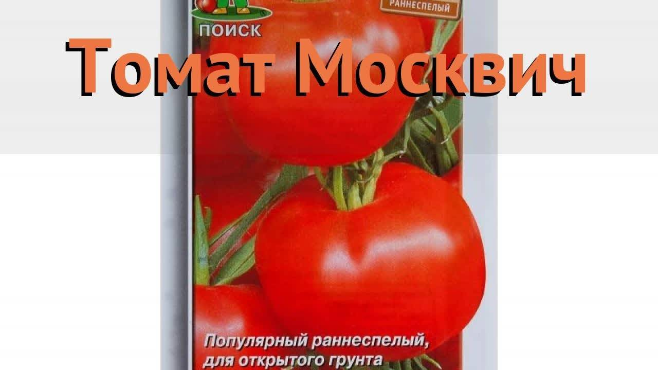 Томат москвич описание сорта