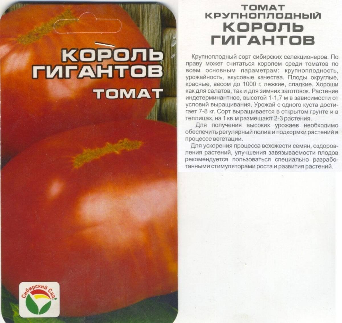 Необычайно вкусный томат «король гигантов»: характеристика и описание сорта, фото