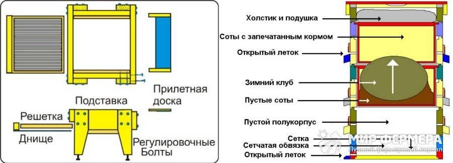 Главные особенности 8-рамочных ульев