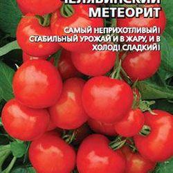 Челябинский метеорит помидоры отзывы