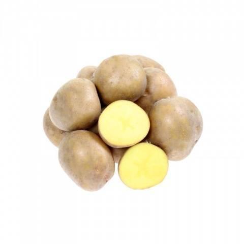Картофель брянский деликатес