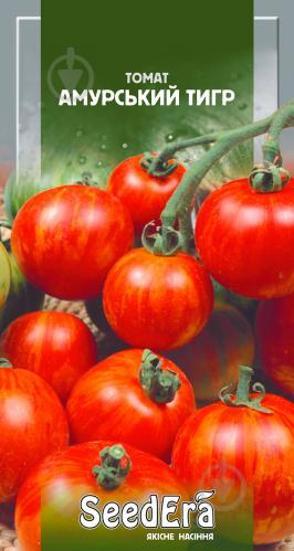 Описание сорта томата сибирский тигр, его характеристика и урожайность