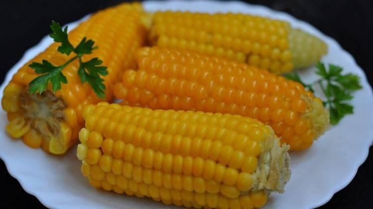 Кукуруза – польза и вред, рецепты народной медицины