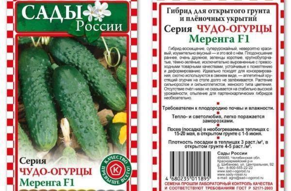 Огурец герман f1 отзывы и фото раннего высокоурожайного сорта