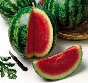 Арбуз кримсон свит: описание и происхождение сорта, выращивание с фото