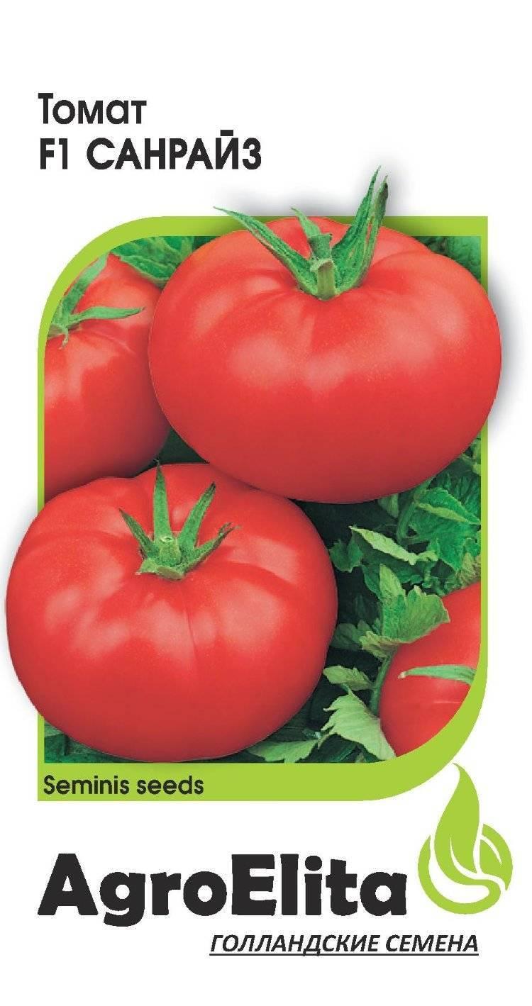 Голландские сорта помидоров: выбор лучших