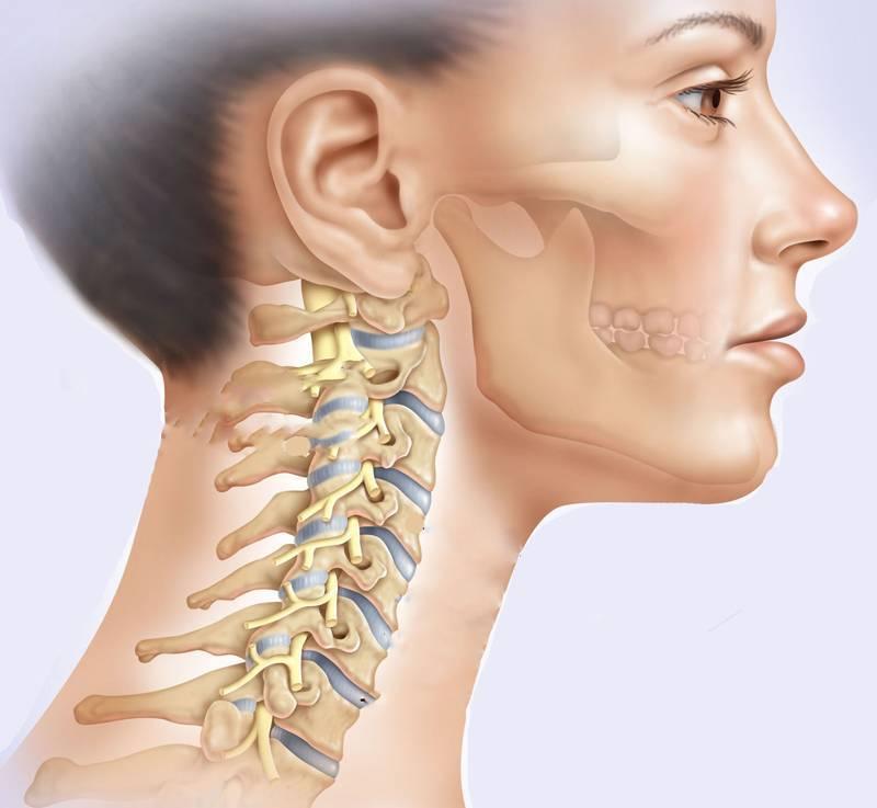 Болезни крс: первая симптоматика, причины появления, методы лечения и профилактики