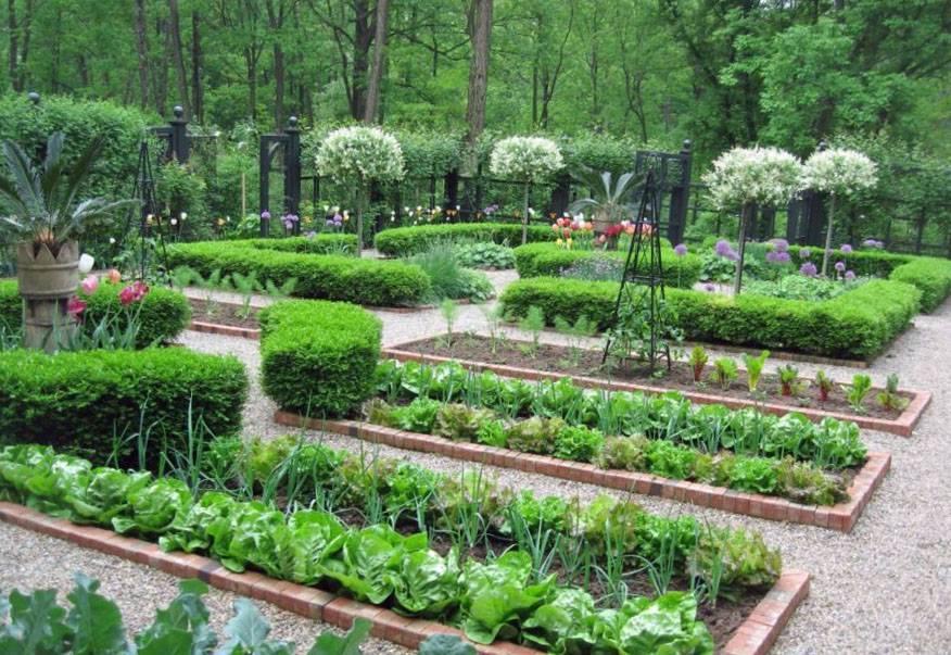 Дорожки между грядками от сорняков: чем и как лучше застелить