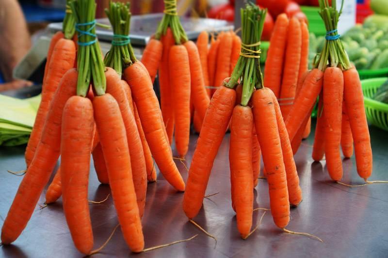 Как сохранить морковь на зиму в земле: до весны, а также проверенные условия и способы для закопанной в яме свеклы