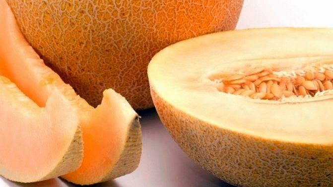 Отравление дыней — симптомы и лечение