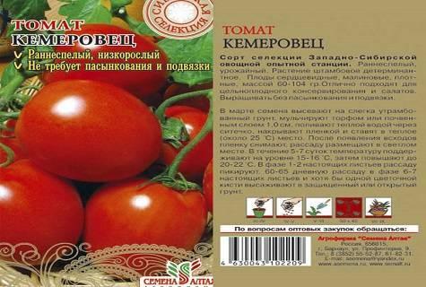 Настоящая находка для всех садоводов — томат кемеровец: описание сорта