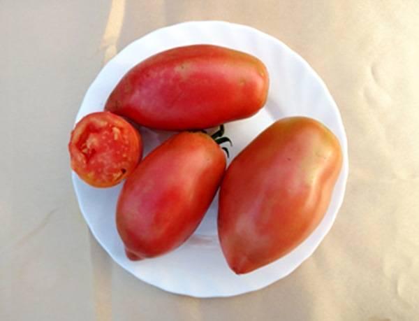 Крупный томат розовый фламинго: гордость садовода и 4 достоинства