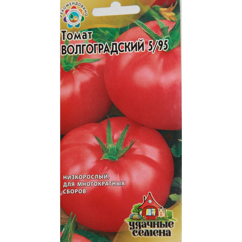 Томат волгоградский 5/95: отзывы, описание и фото