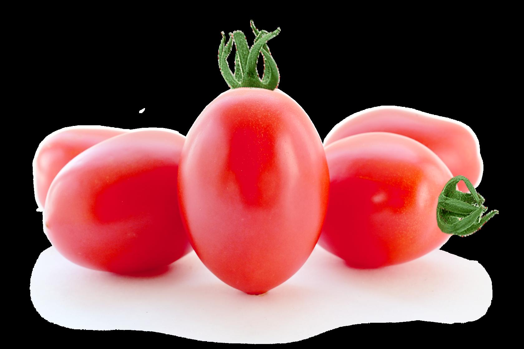 Сливовидные томаты сорта