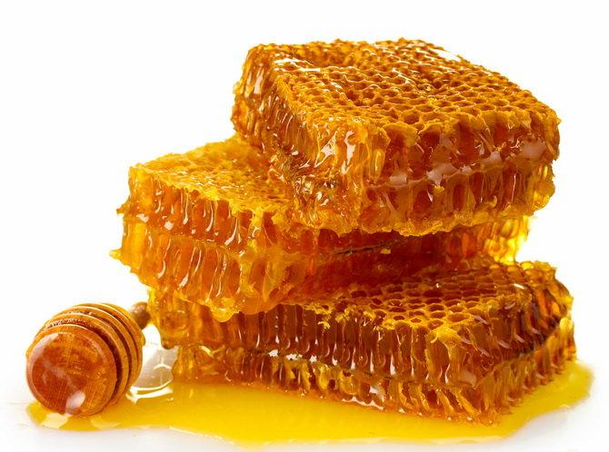 Мед в сотах: можно ли есть воск соты, как едят?
