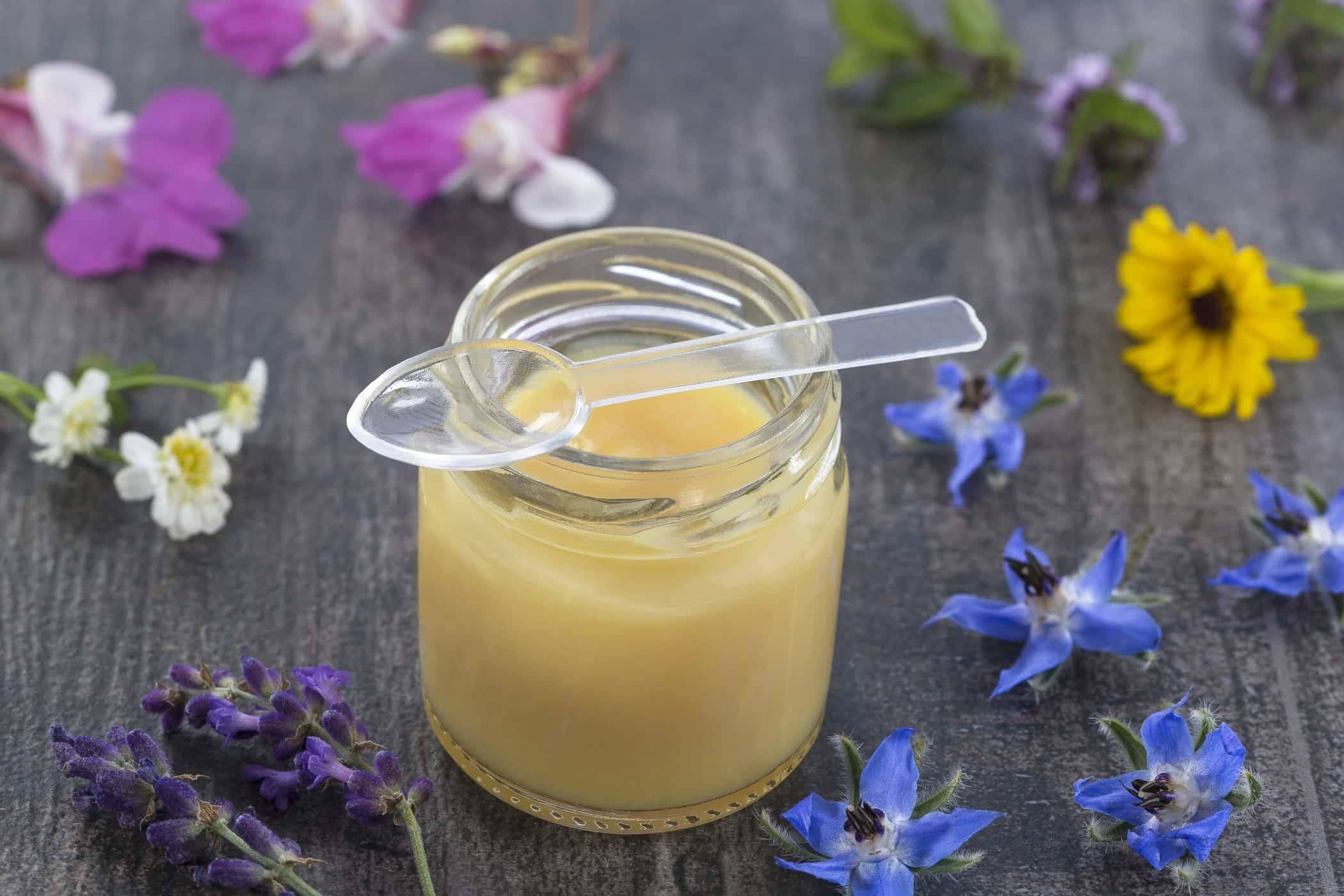 Пчелиное маточное молочко— полезные свойства диковинного вещества и тонкости его применения