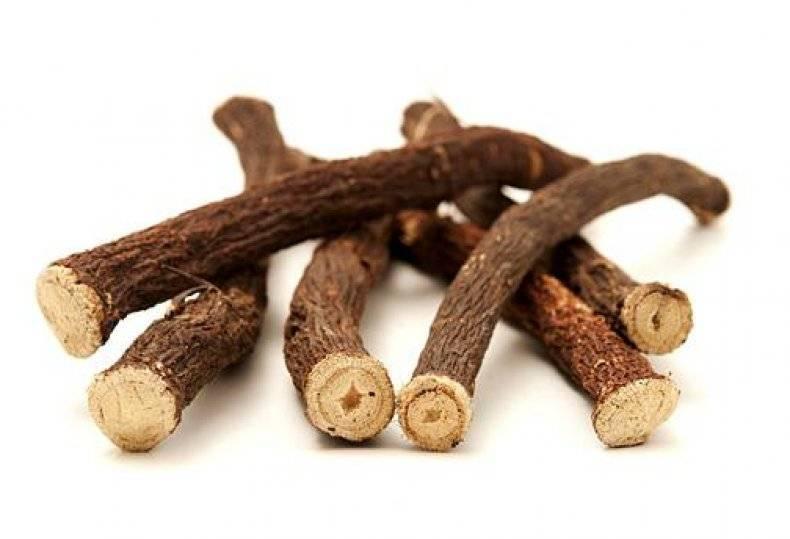 Все, что нужно знать о корне подсолнуха: чем полезен, какими лечебными свойствами обладает и кому противопоказано употребление?