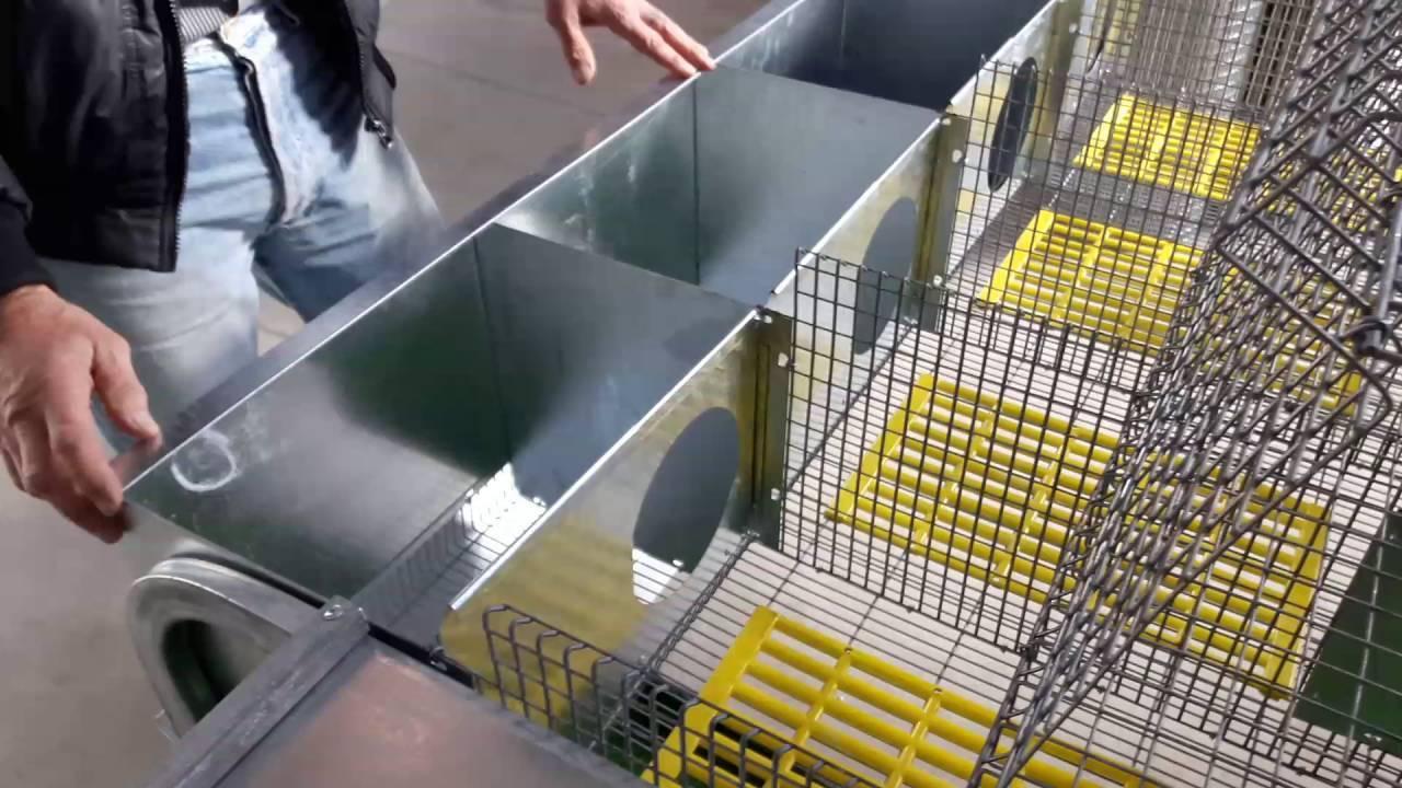 Комфортабельная клетка для кроликов, сделанная своими руками