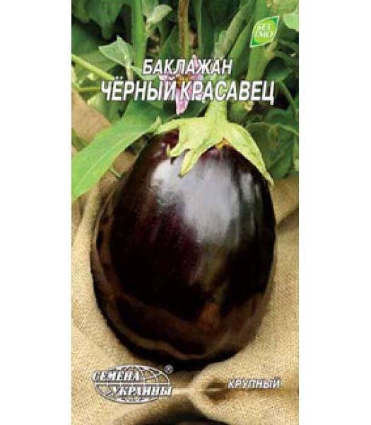 Баклажан чёрный красавец: характеристика сорта