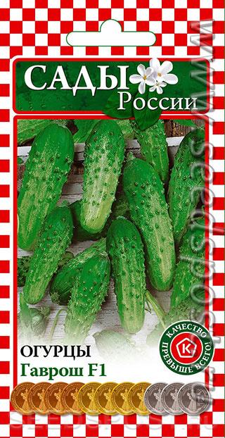 Упругие и сочные зеленцы для засолки — огурец хрустящий f1: описание сорта и характеристики