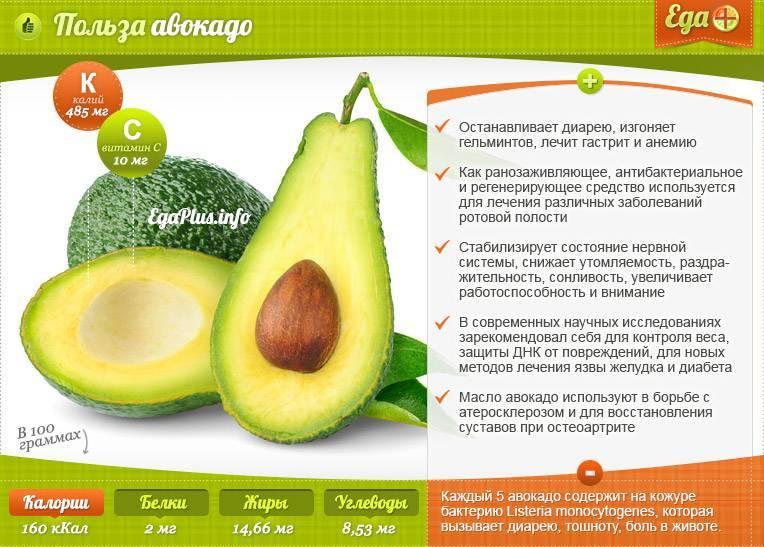 Авокадо для похудения: полезные свойства, диетические рецепты
