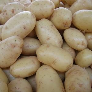 Среднеспелый сорт картофеля наяда — описание корнеплода