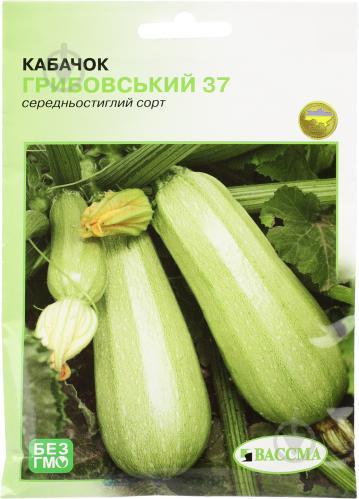 Сорт кабачков грибовский 37