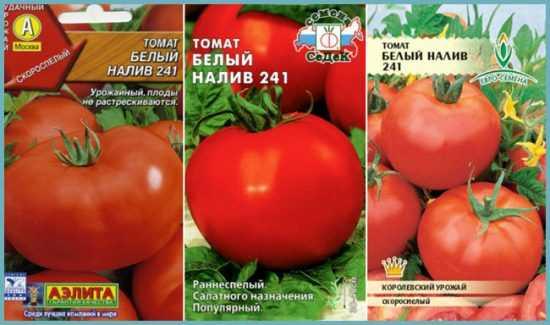 Томат белый налив: 115 фото и видео инструкция по посадке и уходу за помидором
