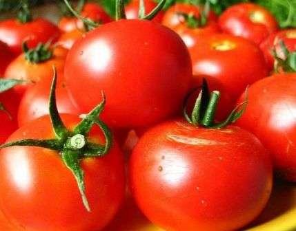Как обработать семена томатов перед посадкой