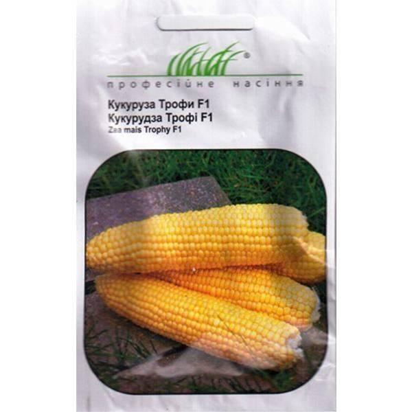 Сорт кукурузы Трофи F1