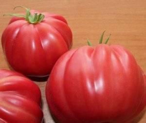 Сорт томата «инжир розовый, красный»: характеристики, фото, отзывы