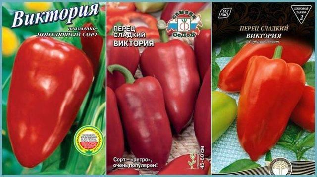 Перец виктория — описание сорта и особенности выращивания