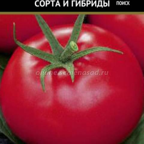 Томат афродита — описание сорта, урожайность, фото и отзывы садоводов