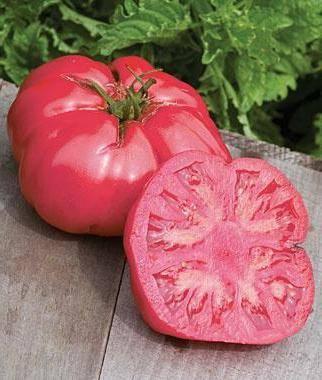 """Томат """"розовый мед"""": характеристика и описание крупноплодного сорта помидор, фото созревших плодов, выращивание и борьба с вредителями"""