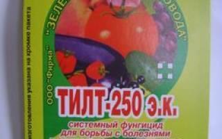 Фунгицид тилт: инструкция по применению для томатов
