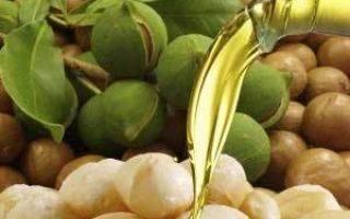 Королевский орех – макадамия. все за и против добавления данного продукта в рацион детей